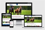 Neue Website Reitsport Obersee